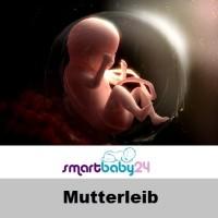 Mutterleib